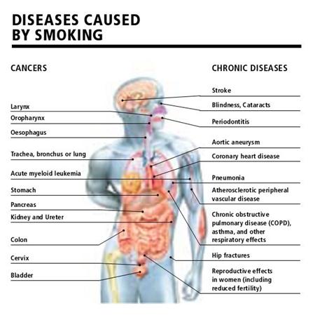informasi-kesehatan-remaja.blogspot.com